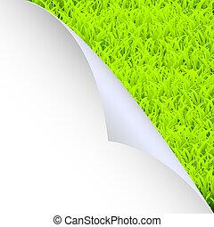 groen gras, en, papier, hoek