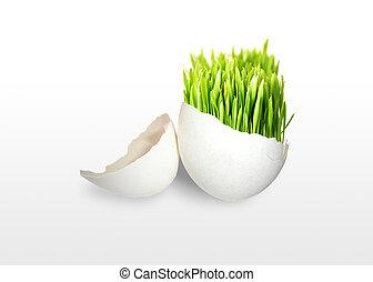 groen gras, in, ei