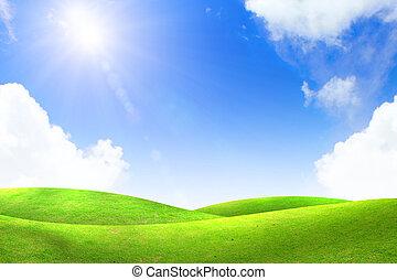 groen gras, met, blauwe hemel