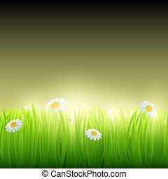 groen gras, met, flowers.