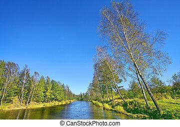 groen landschap, natuur