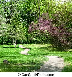 groen park, in, lente