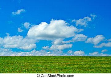 groen veld, blauwe hemel, en, wite wolken