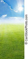 groen veld, blauwe hemel, heldere zon