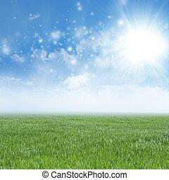 groen veld, blauwe hemel, wite wolken