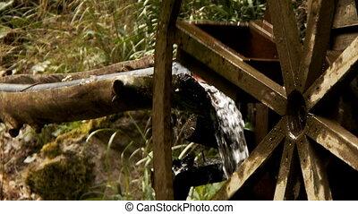 groen water, molen, natuur