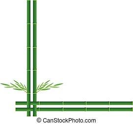 groene, bamboe, vector, ontwerp