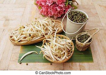 groene boon, zaad, bonen, fris, spruiten