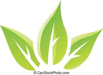 groene, glanzend, bladeren, pictogram
