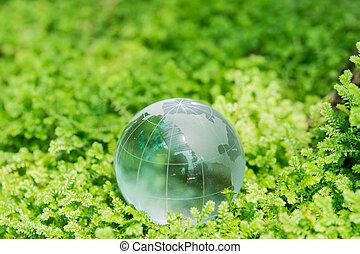 groene, glas globe, gras