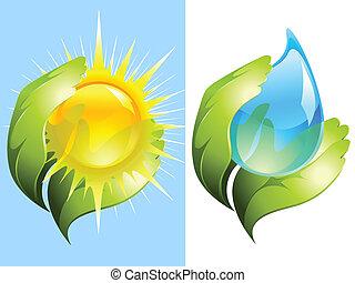 groene, handen, het behouden, water, en, zon