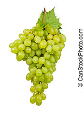 groene, het leggen, vrijstaand, druiven, bos