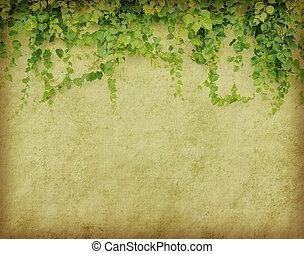 groene, klimop, op, oud, grunge, antieke , papier, textuur