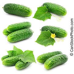 groene, komkommer, groente, vruchten, met, vellen, vrijstaand