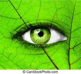 groene, menselijk oog, met, blad, -, ecologie, concept