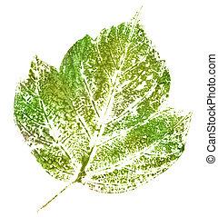groene, postzegel, van, blad
