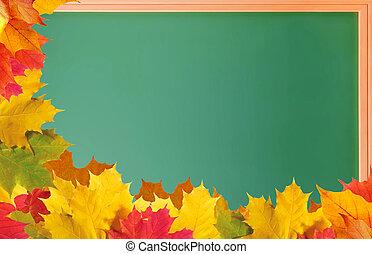 groene, school, bord, met, autumn leaves