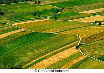 groene, velden, luchtmening, voor, oogsten
