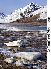 groenland, -, antarcticahaven