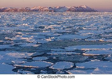 groenlandia, -, ghiaccio mare