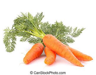 groente, bladeren, wortel