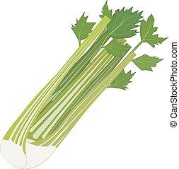 groente, fris, selderij, vrijstaand, pictogram