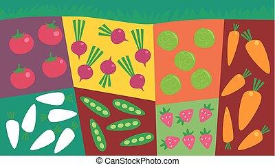 groente, perceel, tuin, illustratie, plat