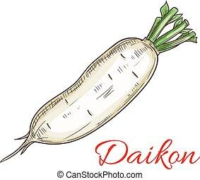groente, schets, daikon, pictogram