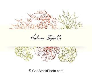 groentes, hand, herfst, celeriac, getrokken, spruiten, ...