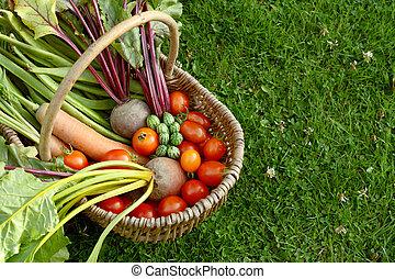 groentes, rustiek, toewijzing, mand, fris, gevulde