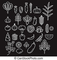 groentes, vector, illustration., icons.