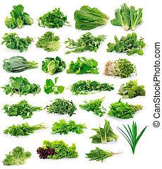 groentes, verzameling, vrijstaand, op wit, achtergrond