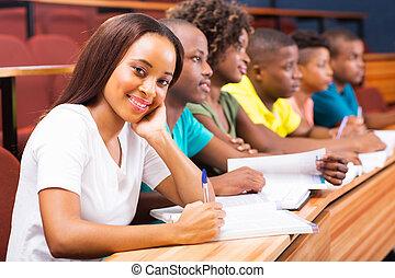 groep, kamer, scholieren, universiteit, amerikaan, afrikaan, lezing