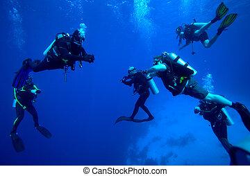 groep, van, duikers, op, 5-min, veiligheid, stoppen, cuba