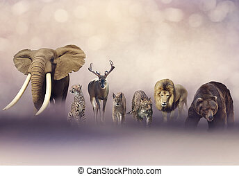 groep, van, wilde dieren