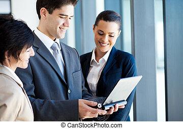 groep van zakenmensen, gebruikende laptop