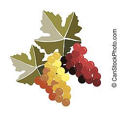 grona, winogrona