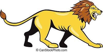 gronder, fâché, lion, marche, dessin animé