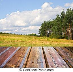 grondslagen, houtenvloer, bos, herfst, zonlicht, mooi