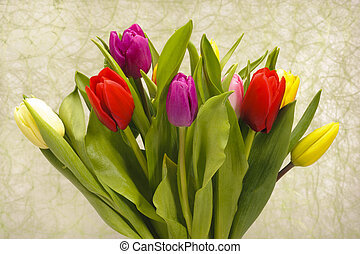 grono, bukiet, od, tulipan, kwiaty