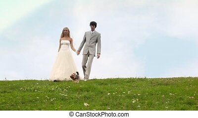 groom and bride go keeping for hands downwards on meadow, terrier nearby runs
