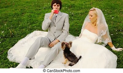 groom inflates sphere-heart and gives to its bride, and dog barks at it