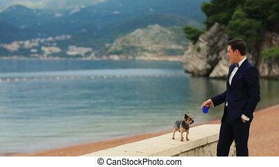 Groom walking the cute yorkshire terrier on sunny quay in Montenegro, Budva close up with beautiful seascape on background
