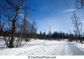 Groomed Cross Country Ski Trail - A freshly groomed cross...