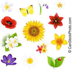 groot, bloemen, en, blad, set