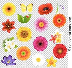 groot, bloemen, set, blad