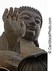 groot, buddha(hong, kong