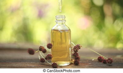 groot, burnet, essentiële olie, in, mooi, fles, op, tafel