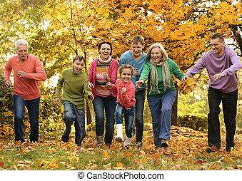 groot, gezin, wandeling