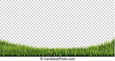groot, grens, set, gras